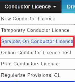 Service on conductor Licence
