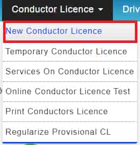 Apply for new conductor Licence